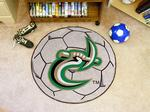 University of North Carolina at Charlotte 49ers Soccer Ball Rug