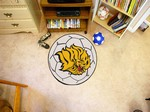 Arkansas - Pine Bluff Golden Lions Soccer Ball Rug